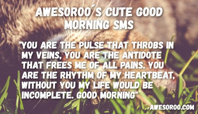 good morning angel quotes