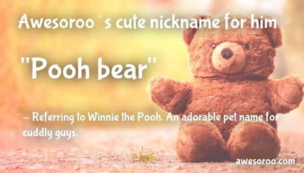 cute pooh bear name