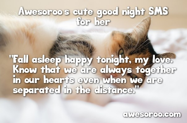 cute sms message with cat
