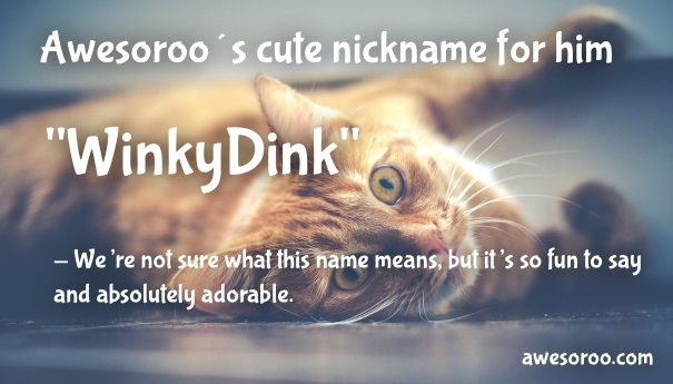 winkydink cute name