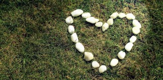 white stone heart grass