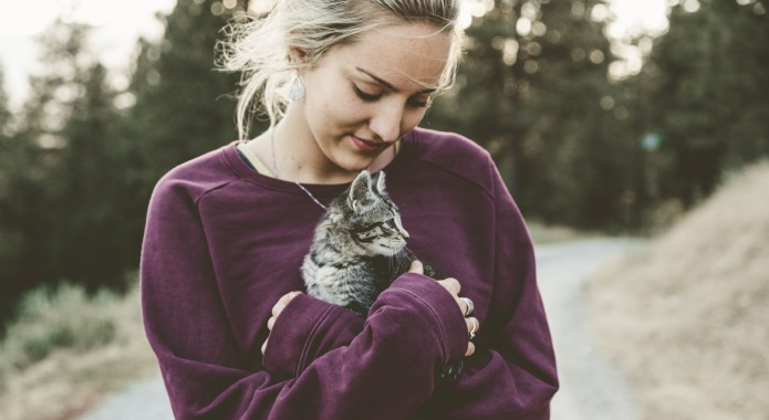 cute girl with kitten desktop
