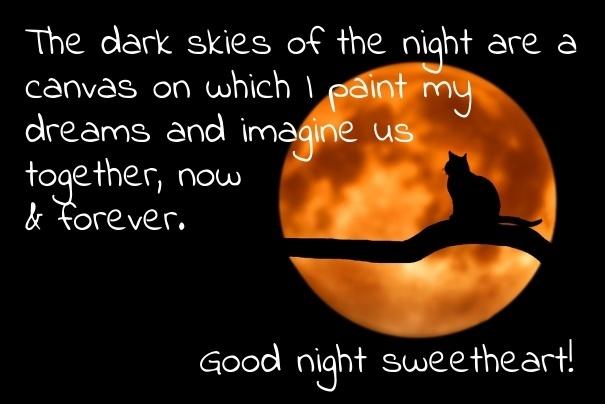 night image 18