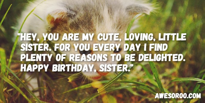 318+ [BEST] Happy Birthday Sister Status Quotes & Wishes