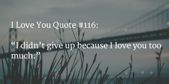 love you quote 7