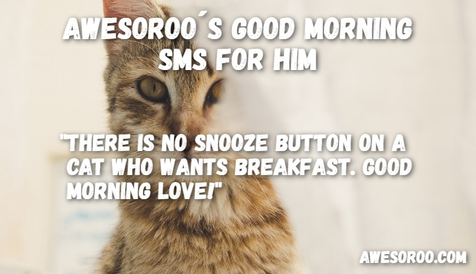 TOP] 140+ Cute Good Morning Text Messages for Him (Jan  2019)