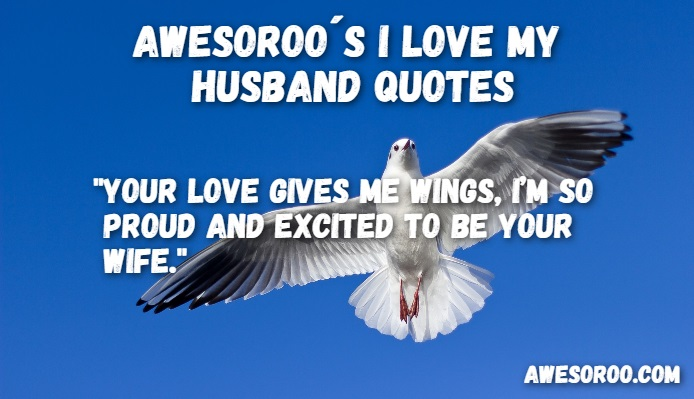 159+ [AWESOME] I Love My Husband Quotes with Images (Feb  2018)