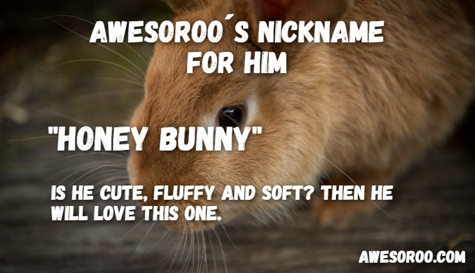 cute honey bunny nickname