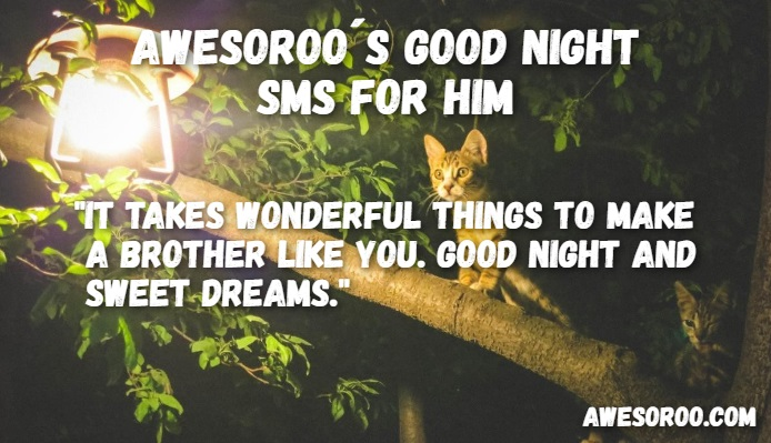 goodnight sms for him 12