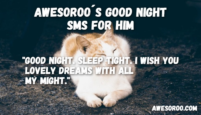 goodnight sms for him 14